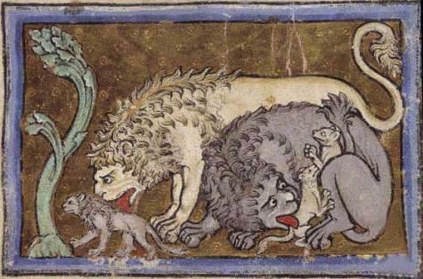 lion_bestiary